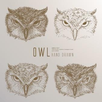 Hand getrokken owl hoofd.