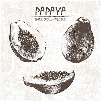 Hand getrokken papaya ontwerp