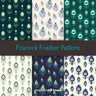 Hand getrokken pauwenveer patroon collectie