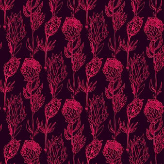 Hand getrokken protea naadloze patroon