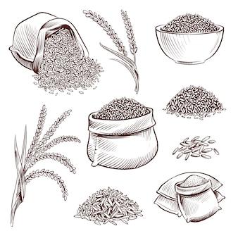 Hand getrokken rijst. doodle zak en. schets rijst oren vector set illustratie
