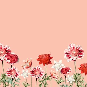 Hand getrokken rode en witte anemone bloem frame