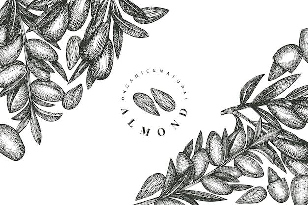 Hand getrokken schets amandel ontwerpsjabloon. biologisch voedsel illustratie. retro moer illustratie. gegraveerde stijl botanische achtergrond.