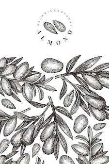 Hand getrokken schets amandel ontwerpsjabloon. biologisch voedsel vectorillustratie. vintage moer illustratie. gegraveerde stijl botanische achtergrond.