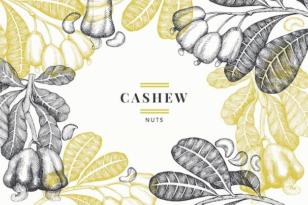 Hand getrokken schets cashew. natuurvoeding vectorillustratie op wit. vintage moer illustratie. gegraveerde botanische stijl.