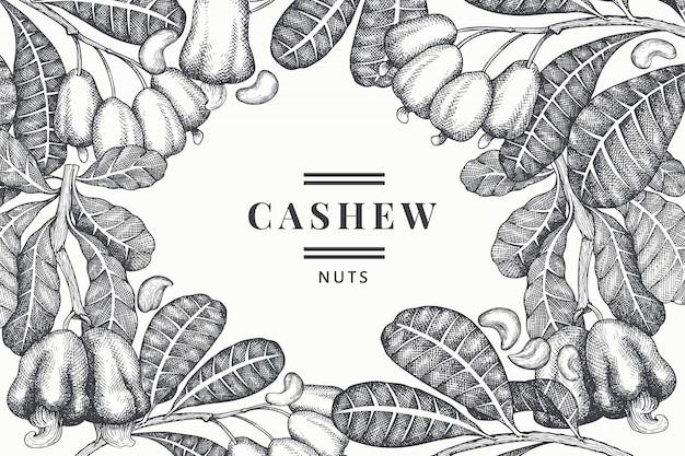 Hand getrokken schets cashew ontwerpsjabloon. biologische voeding vectorillustratie op witte achtergrond. vintage moer illustratie. gegraveerde stijl botanische achtergrond. Premium Vector