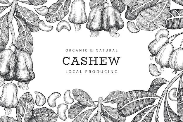 Hand getrokken schets cashew sjabloon. biologische voeding illustratie op witte achtergrond. vintage moer illustratie. gegraveerde stijl botanische achtergrond.