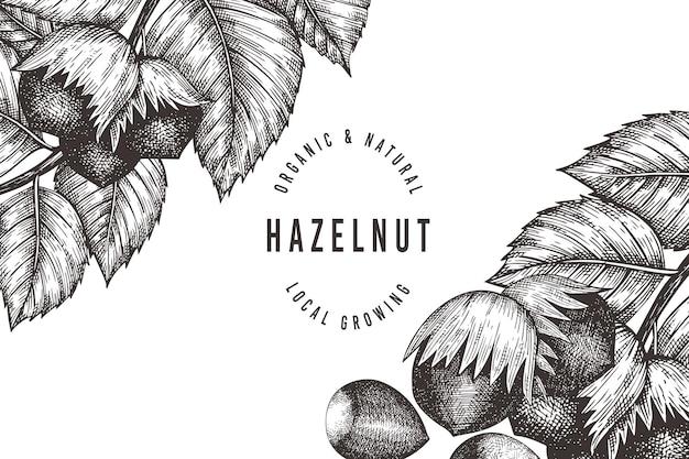 Hand getrokken schets hazelnoot sjabloon. biologische voeding illustratie op witte achtergrond. vintage moer illustratie. gegraveerde stijl botanische achtergrond.