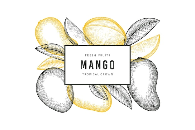 Hand getrokken schets stijl mango