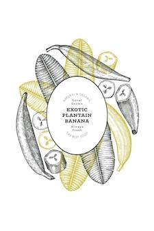 Hand getrokken schets stijl weegbree banner. biologische vers fruit vectorillustratie. retro exotische banaan fruit ontwerpsjabloon