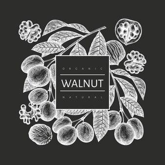 Hand getrokken schets walnoot sjabloon voor spandoek