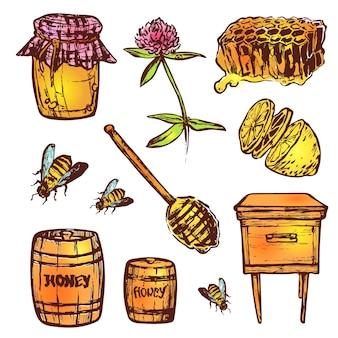 Hand getrokken set met honing elementen. bij, honing, bijenhuis, bloemen, honingraat.