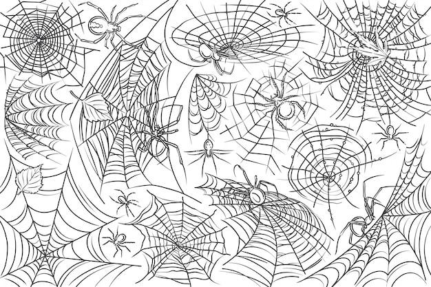 Hand getrokken spin en web