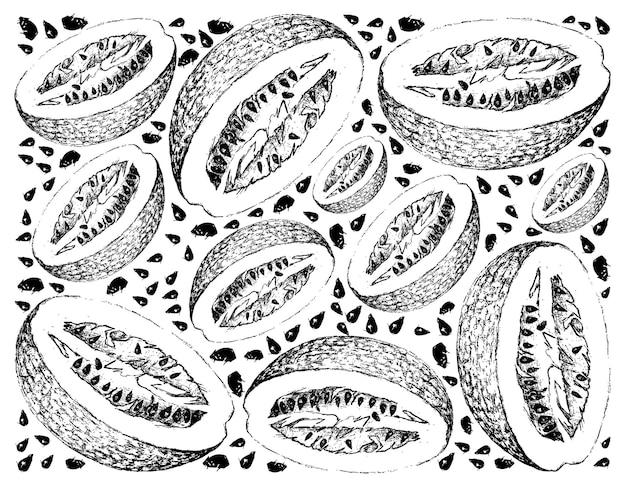 Hand getrokken van chiverre fruit op witte achtergrond