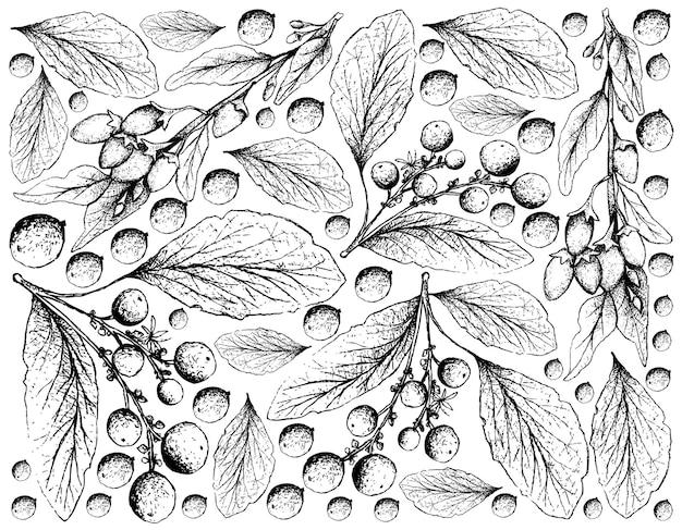 Hand getrokken van goji-bessen en orangeberry-fruitachtergrond