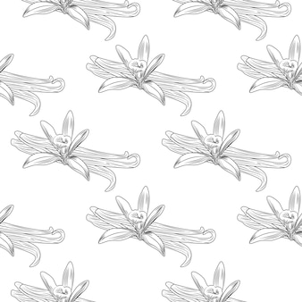Hand getrokken vanille bloem zaad plant tak blad naadloos patroon.