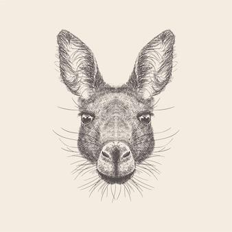 Hand getrokken vector van ezel hoofd illustratie.