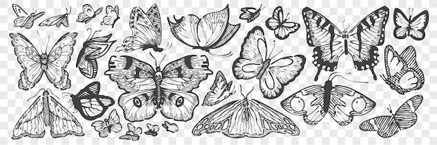 Hand getrokken vlinders doodle set.