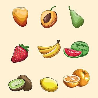 Hand getrokken vruchten behang