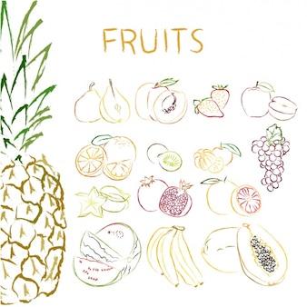 Hand getrokken vruchten collectie