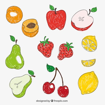 Hand getrokken vruchten