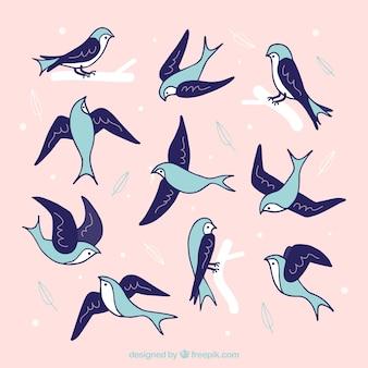 Hand getrokken zwaluwen pakken