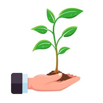 Hand houdt een spruit van een boom vast om in de grond te planten. vlak