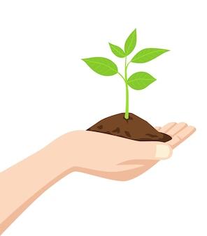 Hand met een vuil en een jonge boom