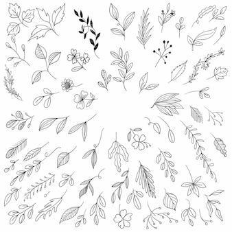Hand tekenen bloemen blad schets set achtergrond
