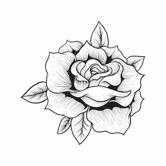 Hand tekenen illustratie roos gravure stijl