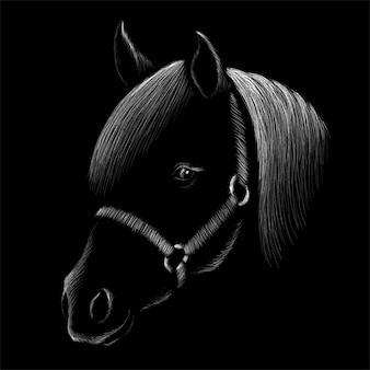 Hand tekenen paard hoofd illustratie
