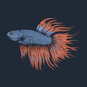 Hand tekenen vintage betta vis vectorillustratie