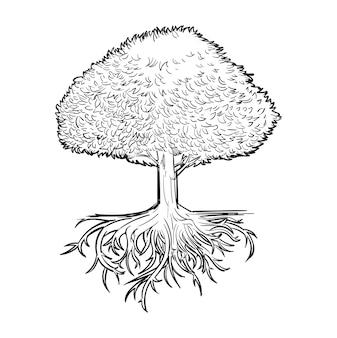 Hand tekening illustratie van ontwikkelingsconcept