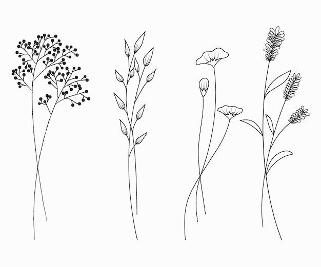 Hand van wilde bloemen wordt getrokken geplaatst die op witte achtergrond worden geïsoleerd die.