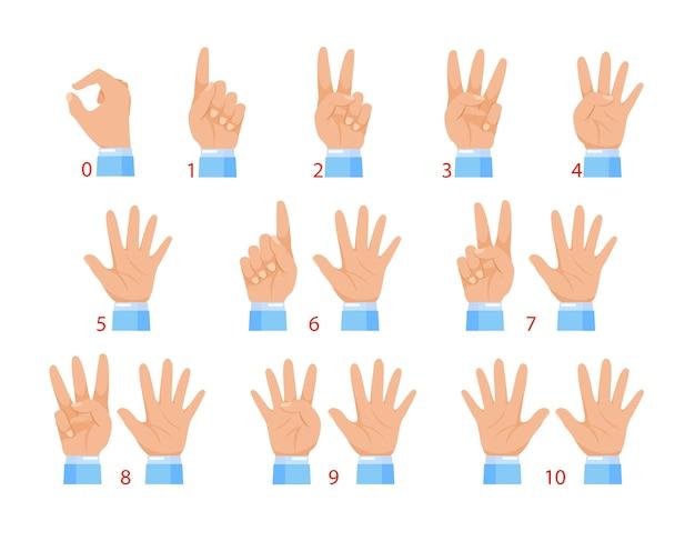 Handen en cijfers door vingers. menselijke hand en nummergebaar geïsoleerd op een witte achtergrond.