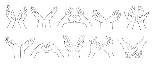 Handen tonen hart beker zorg bescherming ondersteuning handen samengevouwen vectorillustratie