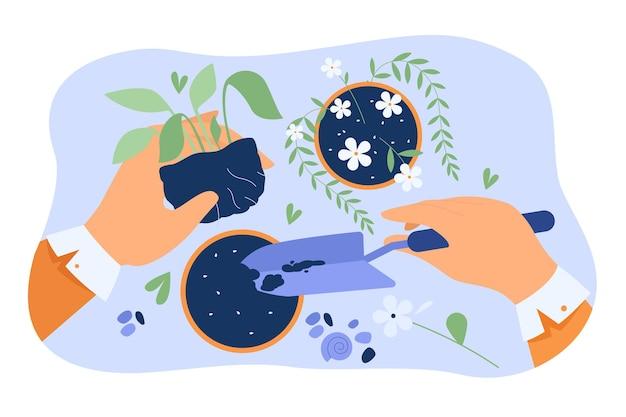 Handen van bloemist zorgen voor planten in potten, kamerplant vasthouden en grond graven met een schop