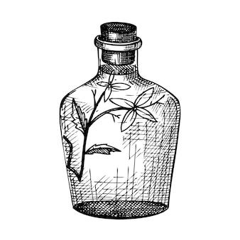 Handgeschetste flessen met bloemextract in vintage stijl. glaswerk hand tekenen.