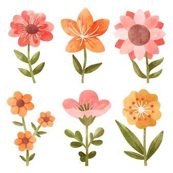 Handgeschilderde aquarel bloem set