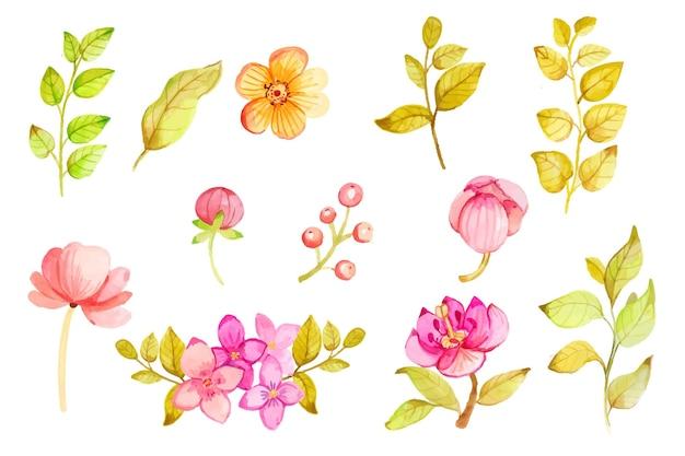 Handgeschilderde aquarel bloemen collectie Gratis Vector