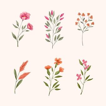 Handgeschilderde aquarel bloemen collectie