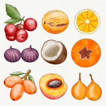 Handgeschilderde aquarel fruit collectie