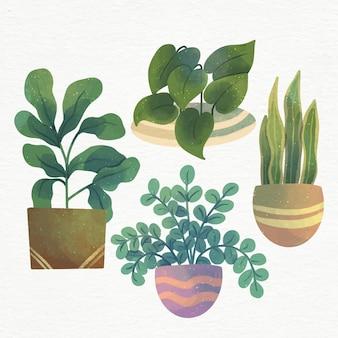 Handgeschilderde aquarel kamerplanten