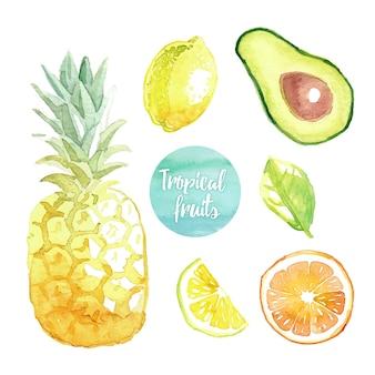 Handgeschilderde aquarel kleurrijke set van fruit