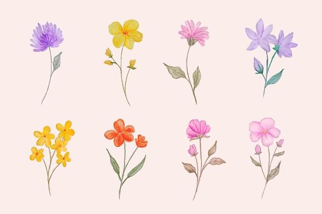 Handgeschilderde bloemencollectie Premium Vector