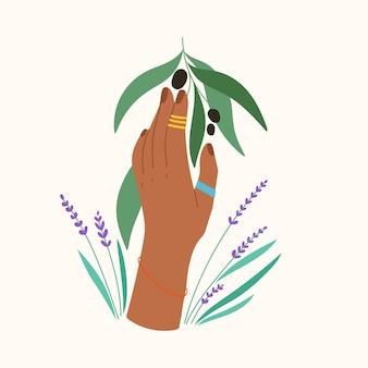 Handgetekend gebaar met bloemen en bladeren trendy compositie met olijftak en lavendel