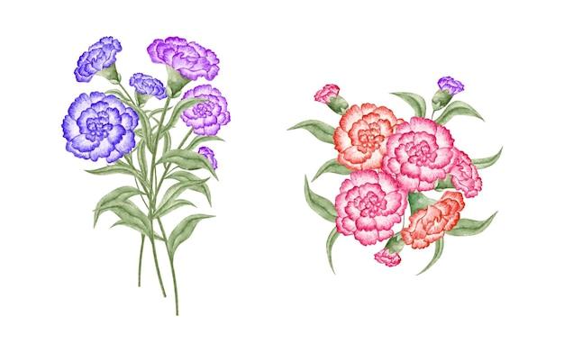 Handgetekende aquarel bloemenboeket set collectie