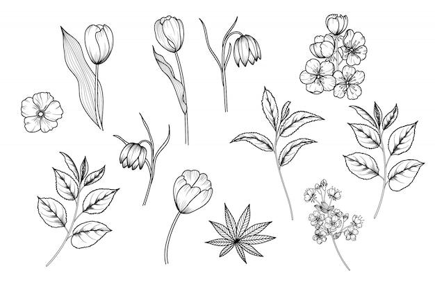 Handgetekende bloemen en bladeren