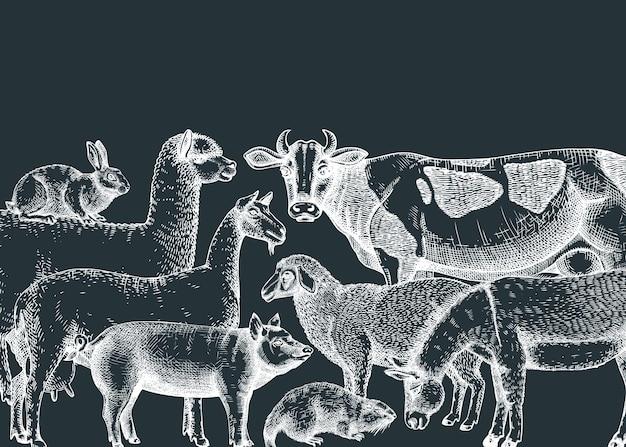 Handgetekende boerderijdieren vectorillustraties op een schoolbord