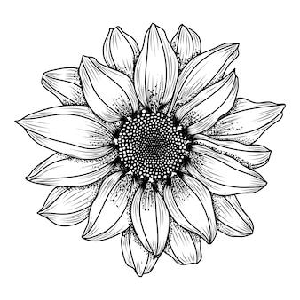 Handgetekende daisy bloem